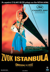 Zvok Istanbula / Crossing The Bridge: The Sound Of Istanbul